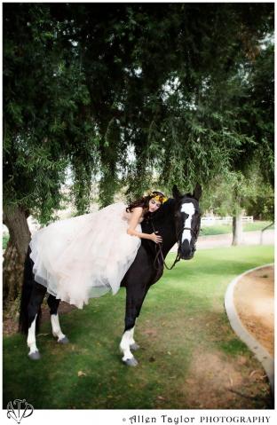 bridal, bride, best, photographer, Anaheim, Anaheim HIlls, Orange County, wedding photography, ranch, giracci, vineyard, allen taylor